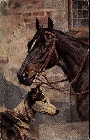 Künstler Ak Braunes Pferd mit Blesse, Zaumzeug, schwarz weißer Hund