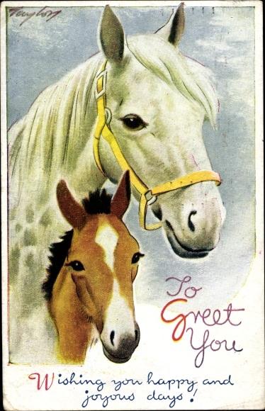Künstler Ak Weißes Pferd mit Zaumzeug, braunes Fohlen