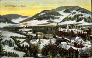Ak Sokołowsko Görbersdorf Schlesien, Ortspanorama im Winter