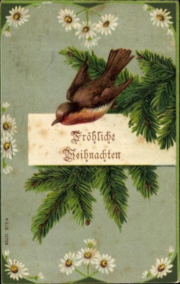 Präge Ak Frohe Weihnachten, Tannenzweig, Rotkehlchen, Margeriten