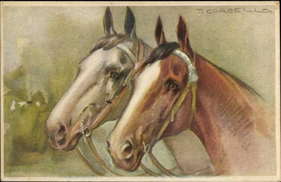 Künstler Ak Corbella, T., Portrait von zwei Pferden mit Zaumzeug