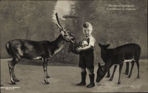 Ak Prinz Wilhelm von Preußen füttert Rehe, Der kleine Tierfreund, Liersch 1952