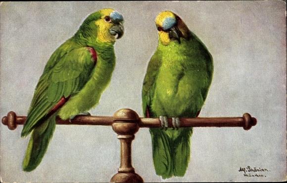 Künstler Ak Schönian, Alfred, Zwei grüne Papageien auf einer Stange