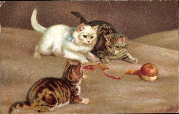 Künstler Ak Drei Hauskatzen, Katzenjunge, Spiel m. Apfel