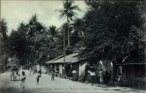 Ak Colombo Ceylon Sri Lanka, The Colpetty Road, leading to Mount Lavinia