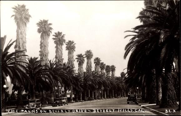 Ak Beverly Hills Kalifornien USA, Palmson Beverly Drive, cars