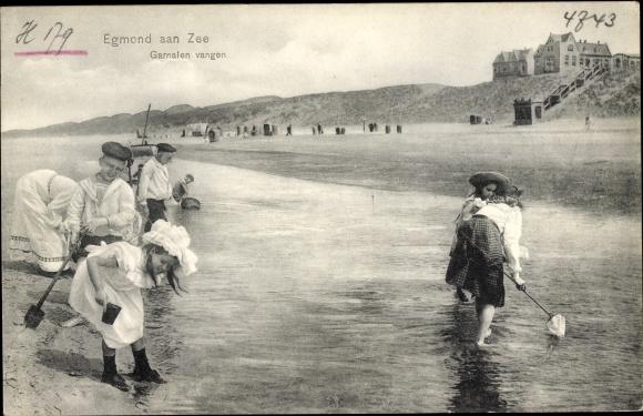 Ak Egmond aan Zee Nordholland Niederlande, Garnelenfang am Strand, Kinder