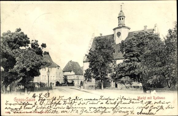 Ak Groß Salze Salzelmen Schönebeck an der Elbe, Markt mit Rathaus, Bäume