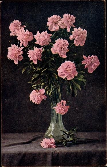 Ak Blumenstillleben, rosa Nelken, Blumenvase