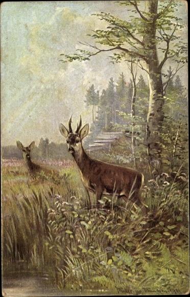 Künstler Ak Müller, M. jun., Haar und Federwild, Rehe