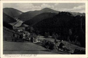 Ak Sokołowsko Görbersdorf Schlesien, Blitzengrund mit Görbersdorfer Tal
