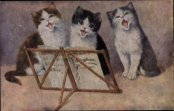 Künstler Ak Drei Hauskatzen, Kätzchen, Katzenmusik