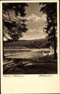 Ak Elend Oberharz am Brocken, Waldfreibad, Schwimmbecken