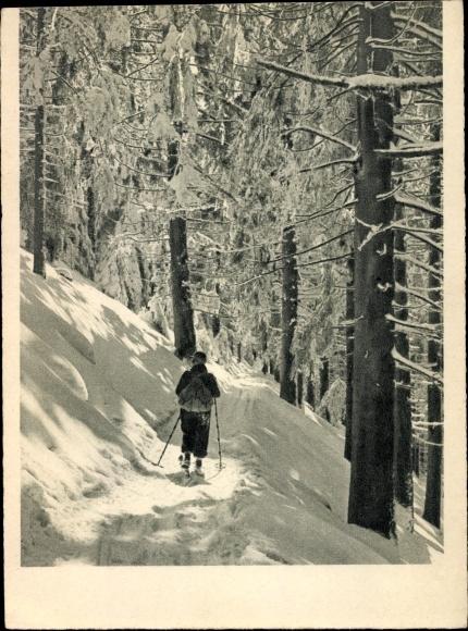 Ak Skifahrer in einem verschneiten Wald, Skilanglauf