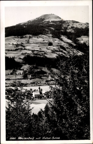 Ak Westendorf in Tirol, Hohe Salve, Waldpartie