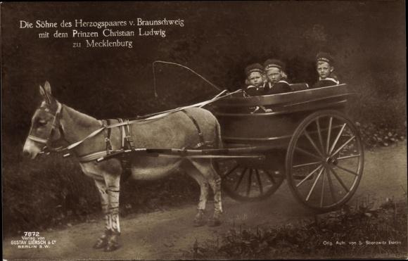 Ak Prinzen von Braunschweig, Prinz Christian Ludwig zu Mecklenburg, Esel, Liersch 7872