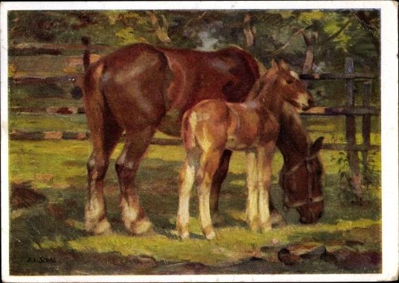 Künstler Ak Stahl, Franz Xaver, Fohlen und Stute, Pferde