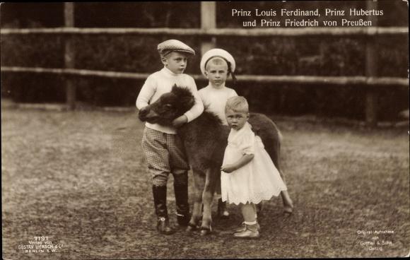 Ak Prinzen Louis Ferdinand, Hubertus, Friedrich von Preußen, Fohlen, Liersch 7191