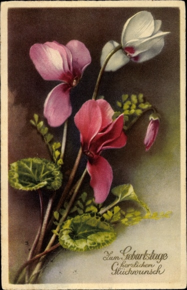 Ak Glückwunsch Geburtstag, Blumen