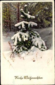 Ak Frohe Weihnachten, Tannenbaum, Winter, Schnee