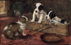 Künstler Ak Zwei Terrier Welpen beobachten einen Hasen