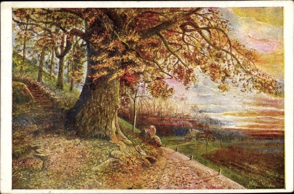 Künstler Ak Straka, Willy, Baum im Herbst, Dämmerung
