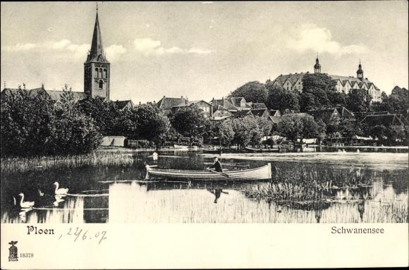 Ak Plön am See Schleswig Holstein, Schwanensee