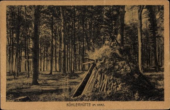 Ak Köhlerhütte im Harz, Wald