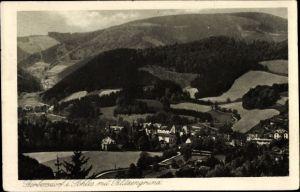 Ak Sokołowsko Görbersdorf Schlesien, Blitzengrund, Landschaftspanorama