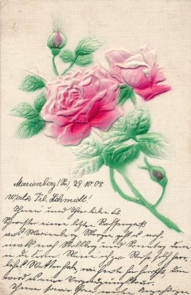 Präge Ak Rosen, Zweig mit Blüten, Knospen