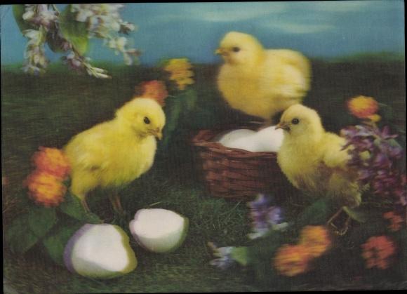 3-D Ak Glückwunsch Ostern, Küken, Eierkorb