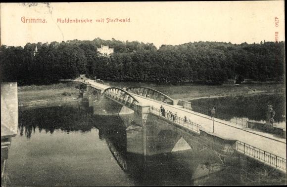 Ak Grimma in Sachsen, Muldenbrücke, Totalansicht, Stadtwald