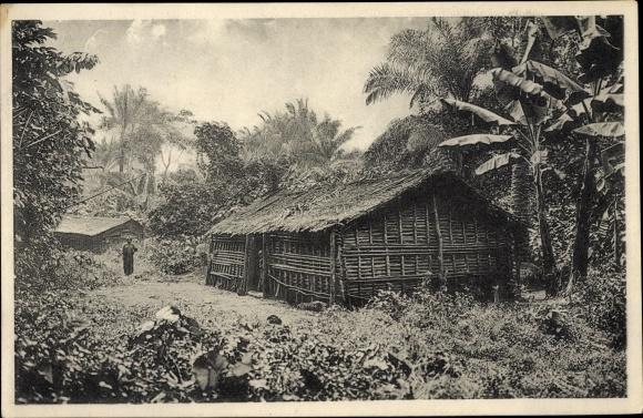 Ak Kamerun, Dorf im Urwald auf dem Kamerunberg, Bananenpflanzen und Ölpalmen