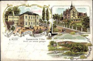 Litho Gauernitz Klipphausen Sachsen, Münch's Gasthof, Schloss Gauernitz, Insel