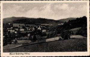 Ak Lázně Jeseník Gräfenberg Freiwaldau Reg. Olmütz, Gesamtansicht