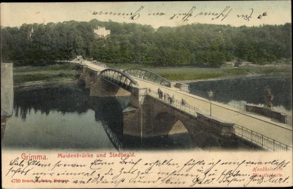 Ak Grimma in Sachsen, Muldenbrücke, Stadtwald
