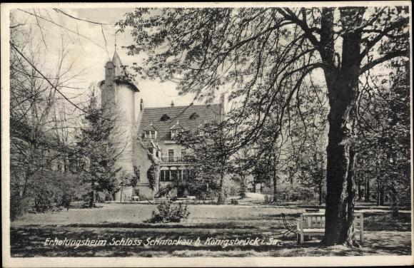 Ak Schmorkau Neukirch Sachsen, Erholungsheim Schloss Schmorkau