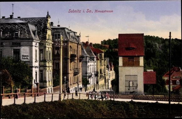 Ak Sebnitz in Sachsen, Kreuzstraße, Blumenfabrik, Wohnhäuser 0