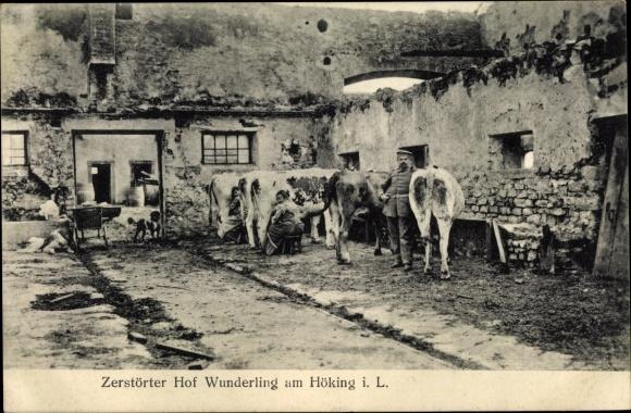 Ak Véry Meuse, Hof Wunderling am Höking, Melken der Kühe, Kriegszerstörungen, I. WK 0