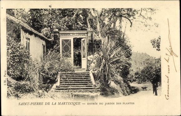 Ak Saint Pierre Martinique, Entrée du Jardin des Plantes 0