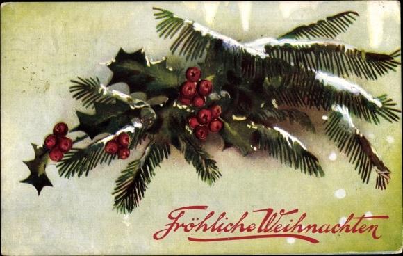 Ak Frohe Weihnachten, Tannenzweig, Stachelpalme, Schnee