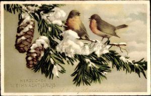 Ak Frohe Weihnachten, Tannenzweig, Tannenzapfen, Vögel, Schnee