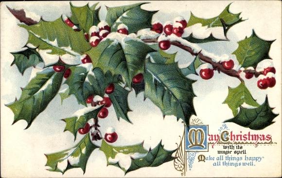 Präge Ak Frohe Weihnachten, Stachelpalme, Schnee 0