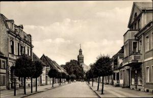 Ak Neustadt Dosse in Brandenburg, Robert Koch Straße, Allee