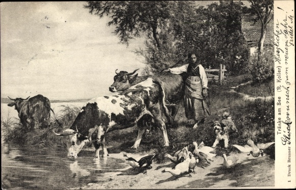 Künstler Ak Koller, R., Tränke am See, Rinder, Gänse, Hund