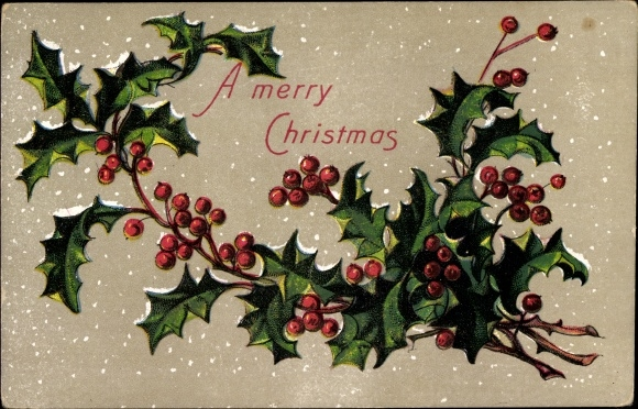 Präge Ak Frohe Weihnachten, Stachelpalmenzweig, Schnee