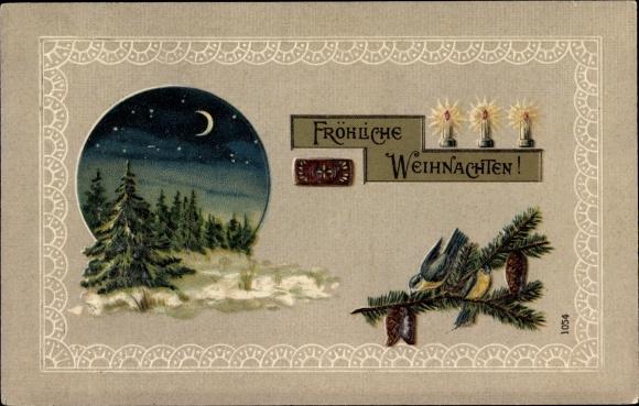 Präge Mondschein Ak Frohe Weihnachten, Tannenbäume, Kerzen, Vögel