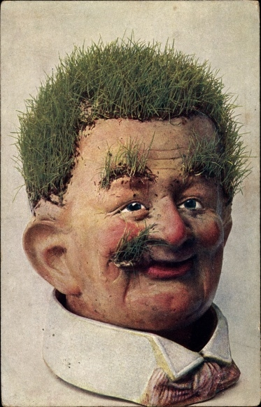 Ak Männerportrait, Kopf mit Gras als Haare, Augenbrauen, Bart