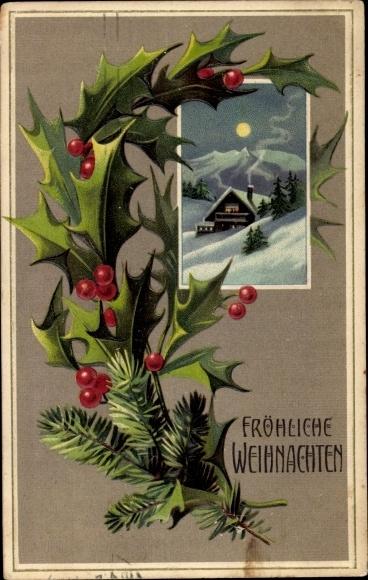 Präge Passepartout Ak Frohe Weihnachten, Stachelpalme, Mondschein, Schneelandschaft