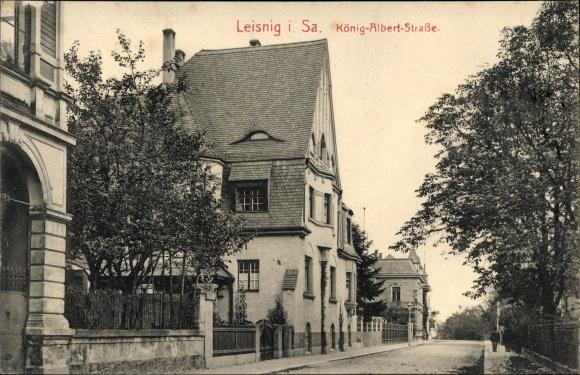 Ak Leisnig in Sachsen, König Albert Straße